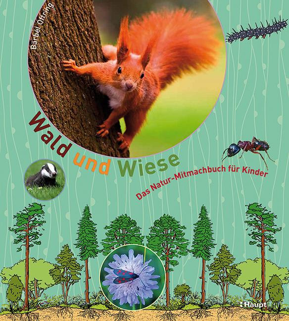 Rezension: Wald und Wiese: Das Natur-Mitmachbuch für Kinder