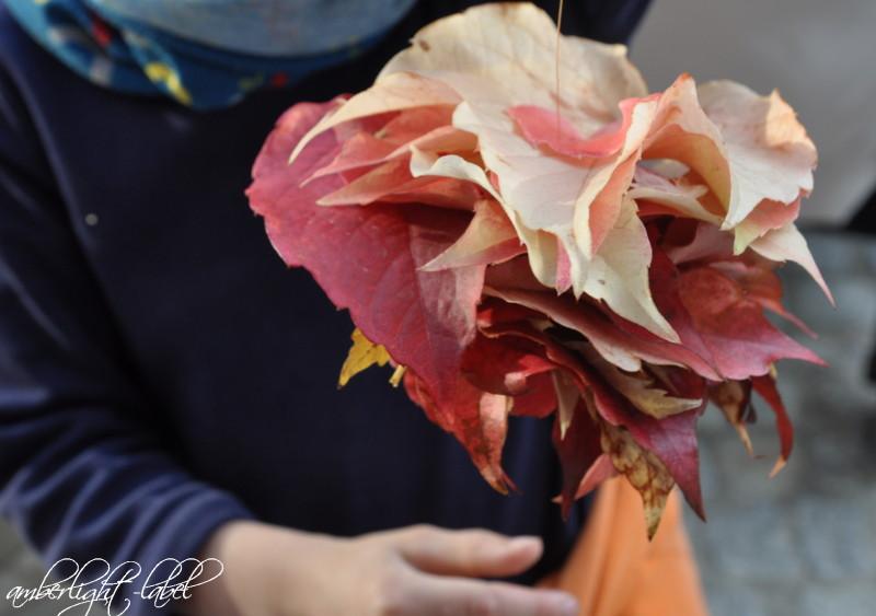 Herbstblätter sammeln