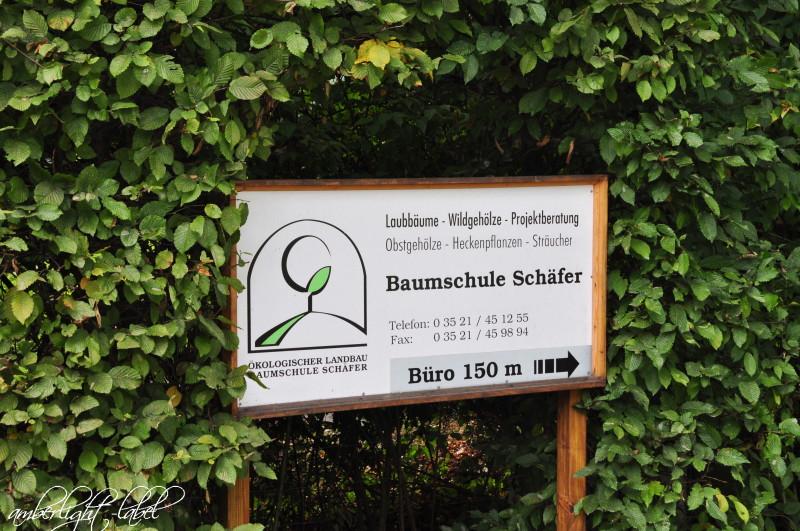 Ökologischer Landbau – Baumschule Schäfer in Naustadt/Sachsen