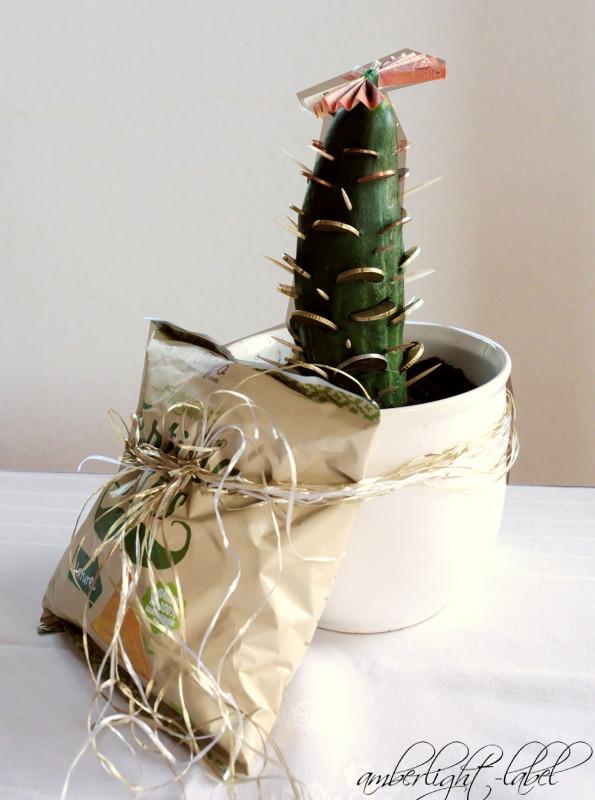 Geldgeschenk: Kaktus