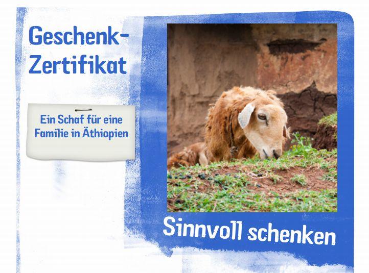 Blogeinnahmen: ein Schaf für Äthopien