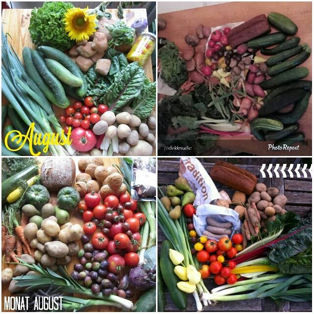 Solidarische Landwirtschaft Schellehof August 2015