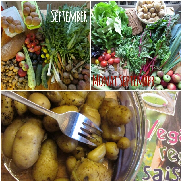 Solidarische Landwirtschaft Schellehof September & Oktober 2015